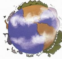 biodiversite1.jpg