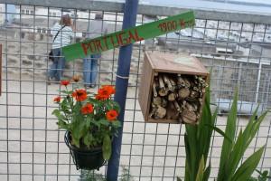 jardinomade 039.jpg