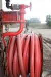 rouge 006.jpg