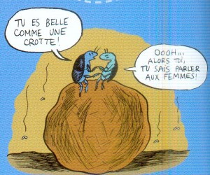 bousier1.jpg