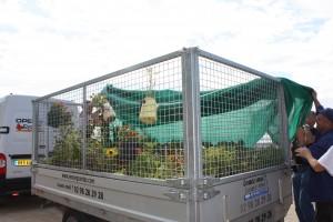 jardinomade 123.jpg