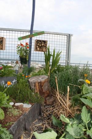 jardinomade 041.jpg