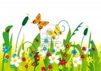 6443833-deux-papillons-sur-une-prairie-fleurie-illustration.jpg