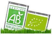 logos AB.jpg