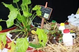 Produits du jardin partagé